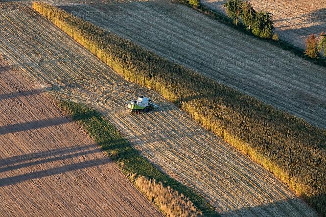 Kombajn, pole, zemědělství