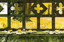 Plot, kov, mech, rez, list, podzim