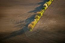 Pole, les, mez, zemědělství