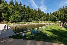 Lesní koupaliště Liberec