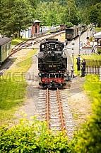 parní vlak, lokomotiva, úzkorozchodná