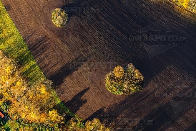 Pole, zemědělství, podzim, strom, mez