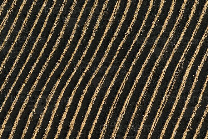 Pole, zemědělství