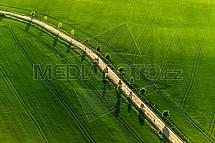 Pole, jaro, zemědělství