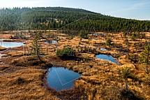 rašeliniště Na Čihadle, Jizerské hory