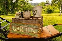 Garden, zátiší, květináč, trakař