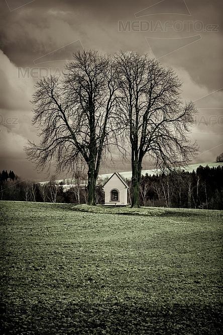 Strom, kaplička, pole