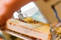 Stáčení medu, včelařství