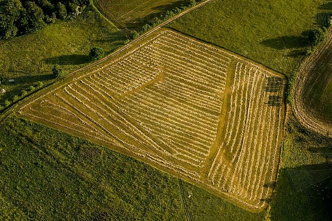 seno, sláma, louka, pole, zemědělství