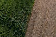 Pole, zemědělství, letecky