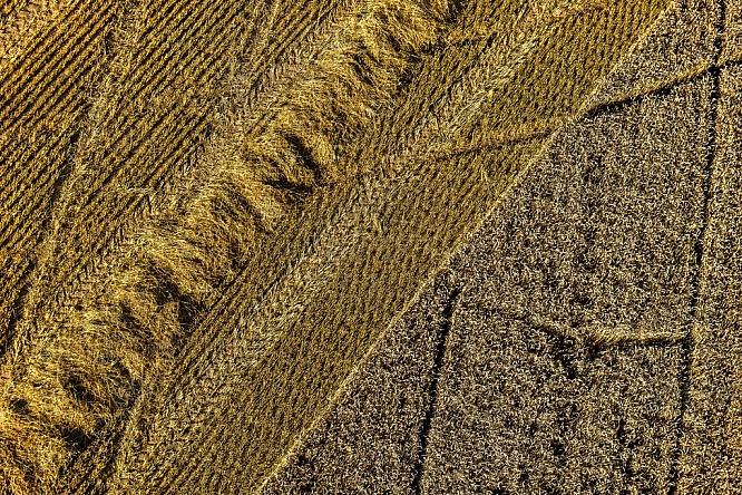 pole, sklizeň, zemědělství, letecky