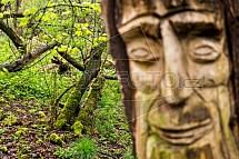 Opičák, les, socha, obličej