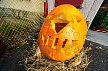 Dýně, halloween