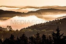 Střední čechy, les, mlha, ráno