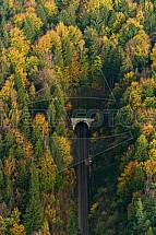 tunel, les, železnice, koleje
