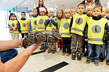 Had, školka, děti
