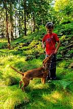 Pes, venčení, les, dítě