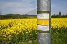Řepka, květ, pole, turistická značka, značení
