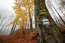Podzim, les, Hrubá Skála, Český ráj