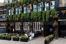 Kavárna, restaurace, pub, zahrádka