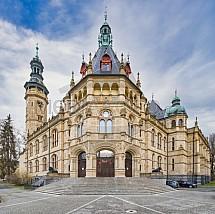 Severočeské muzeum, Liberec, lvi, socha