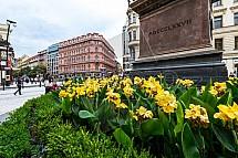 Pomník, Josef Jungmann, Jungmannovo náměstí