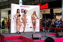 Casting, Česká Miss