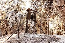 Posed, myslivost, les, zima, sníh