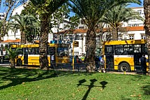 Funchal, autobusy
