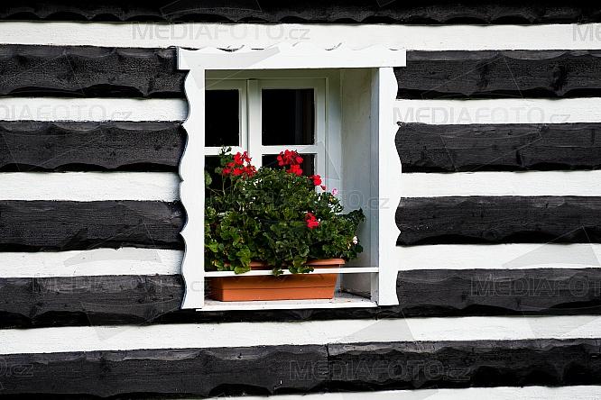 Okno, roubenka, květina