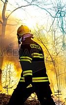 Hasič, požár, les, oheň, hašení