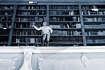 Knihovna, figurka, panáček