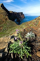 Ponta de Sao Lourenço, Madeira