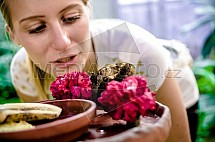 Caligo memnon, motýl, potrava, žena