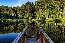 Jenišovský rybník
