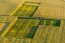 Zemědělství, výzkum, testování, pole