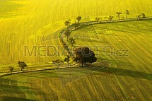 Podzim, pole, cesta, Český ráj