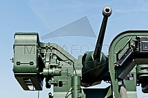 Zbraň, kanón, Pandur, Bushmaster