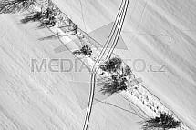 Les, pole, louka, sníh, letecky