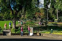 Funchal, park Santa Catarina