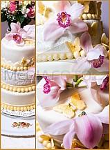 svatba, dort, orchidej